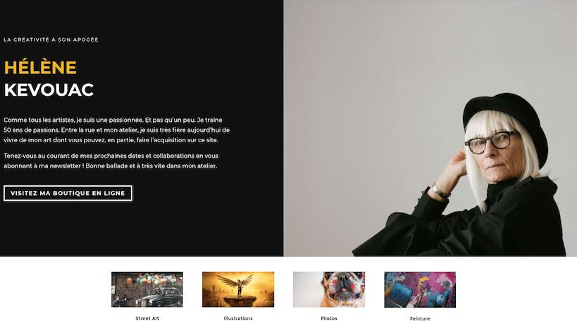 site artiste nouvelle donne web plug and pulse